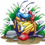 "Revelan que los insectos se comunican entre sí por ""teléfono"""