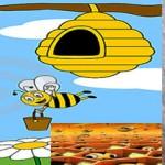 10 datos importantes sobre las abejas
