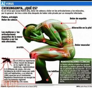 mosquitos transmiten el virus