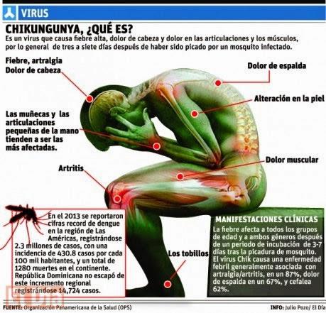 Alertan que se extiende el virus chikungunya, mosquitos transmiten el virus