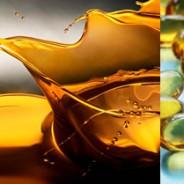 Los insectos son una fuente importante de ácidos grasos omega-3