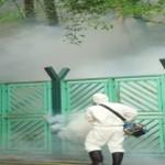 Control y erradicación de mosquitos