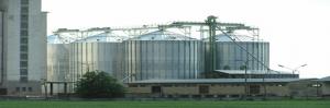 fumigacion-silos-2