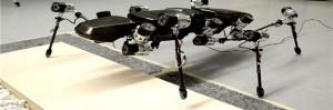 El insecto palo robot, es un mecanismo robot insecto muy complejo