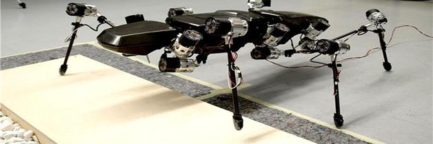 El insecto palo robot