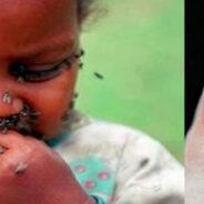 Estudian a la mosca tsetsé con nueva técnica de infrarrojo