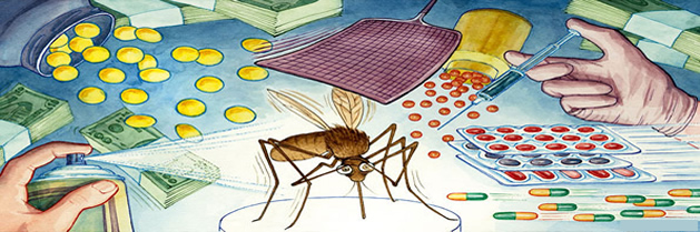 Se descubre cómo los mosquitos transmiten la malaria
