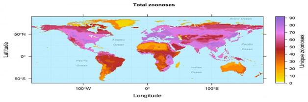 En donde las ratas, monos y otros mamíferos transmiten enfermedades a seres humanos