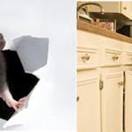 Los roedores: un problema a roer