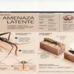 La enfermedad de Chagas: Un regreso anunciado