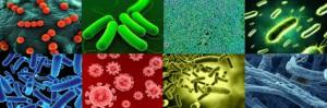 virus-distintos-desinfeccion